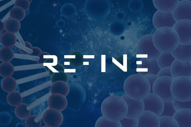 New REFINE website